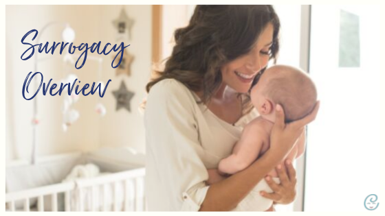 Surrogacy Overview Baby
