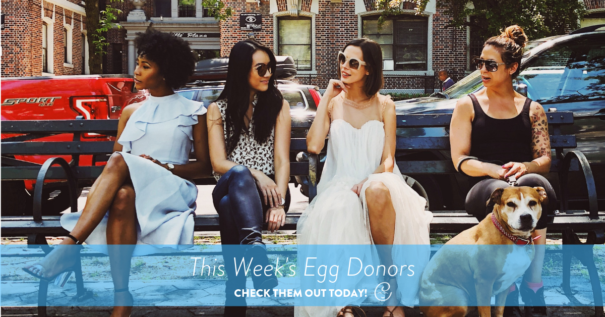 This Week's Egg Donors, four egg donors sitting on bench with dog