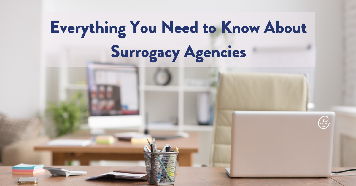 Surrogacy Agencies