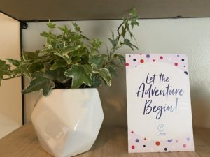 let the adventure begin surrogacy milestone card and plant